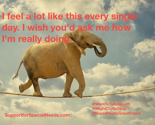 elephant special needs